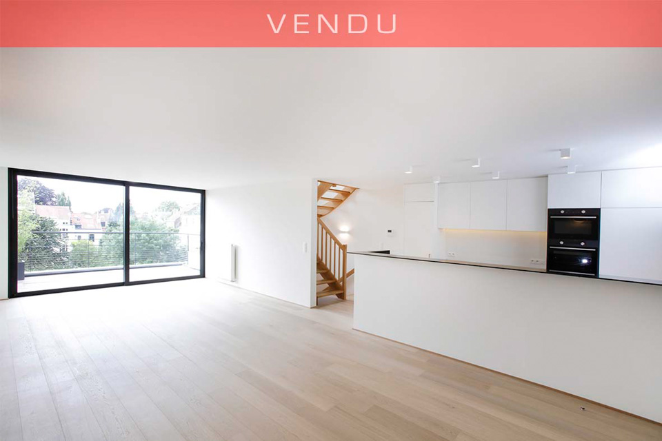 INFORMATIONS DUPLEX A VENDRE - LOT3
